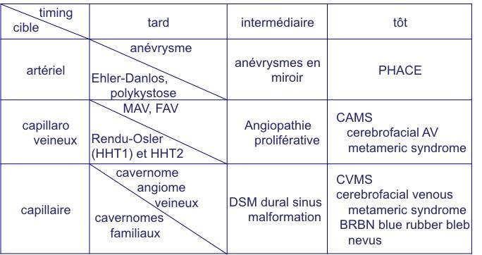 dysplasies vasculaire