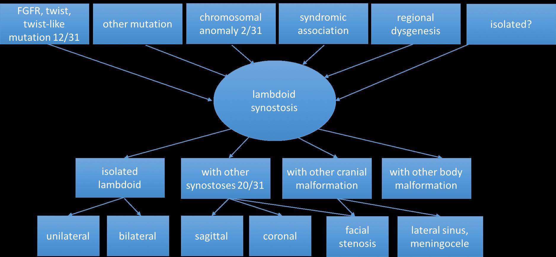lambdoid nosology